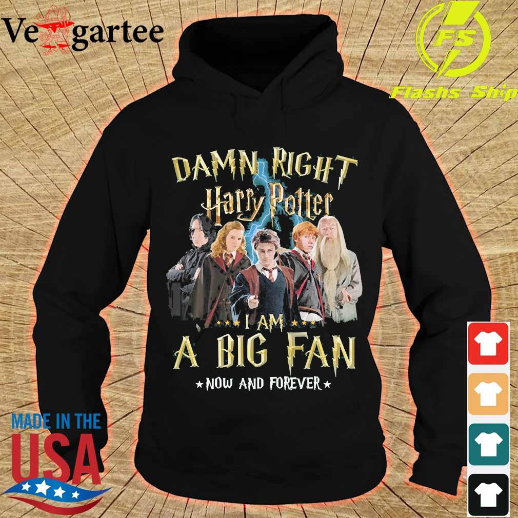 Damn right Harry Potter I am a big fan now and forever s hoodie
