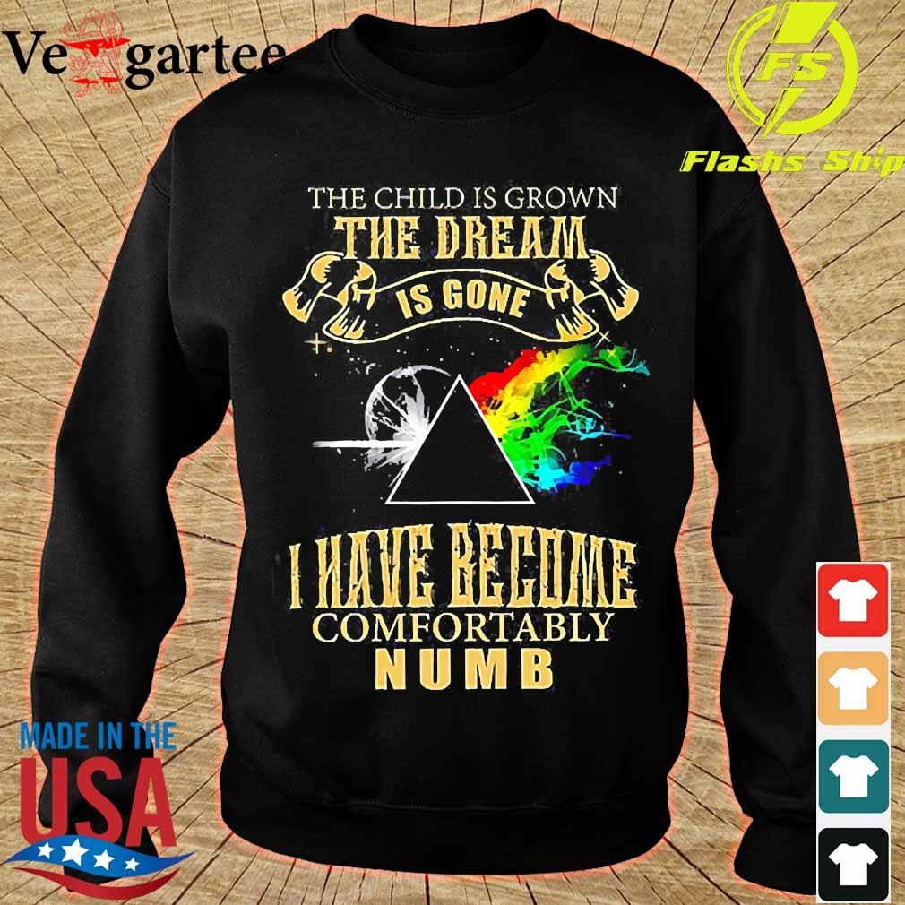 Pink Floyd the child is Grown the dream is gone I have become comfortably numb s sweater